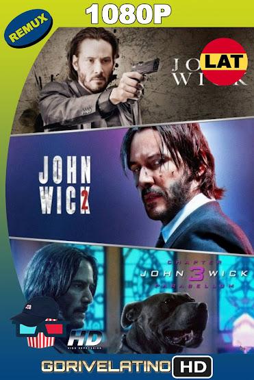 John Wick Colección (2014-2019) REMUX 1080p Latino-Ingles MKV