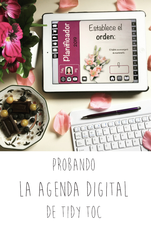 Probando la agenda digital de Tidy Toc