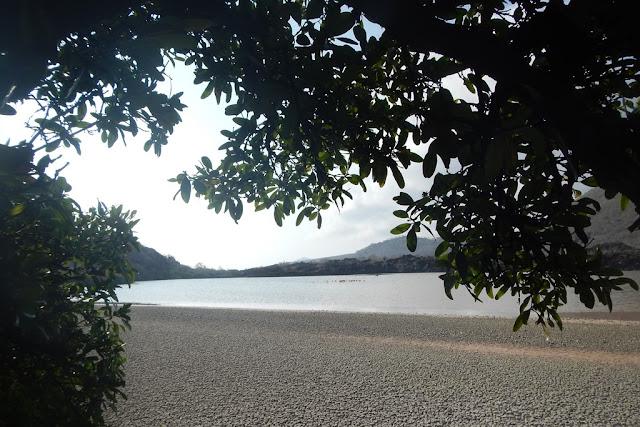 Floreana lake