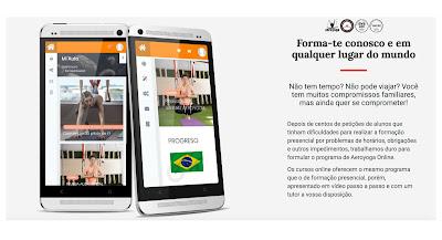 curso online aerial yoga brasil