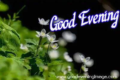 Good Evening natures images
