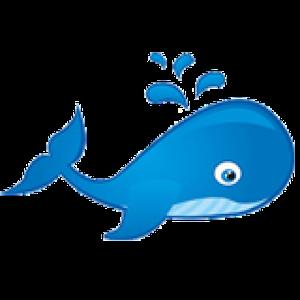 oceanwhale