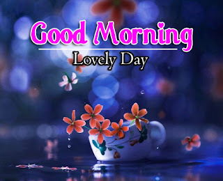 New Good Morning 4k Full HD Images Download For Daily%2B18