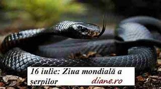16 iulie: Ziua mondială a șerpilor