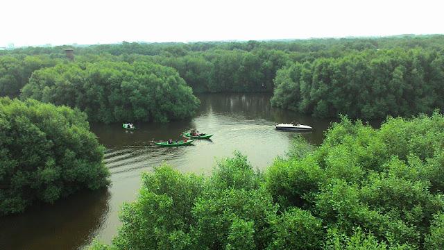 Kawasan Wisata Hutan Mangrove Bontang Kalimantan Timur