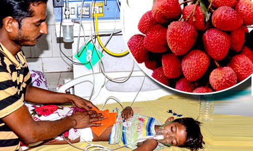 What is encephalitis  (chamki bukhaar) ?, www.arvbiotech.com