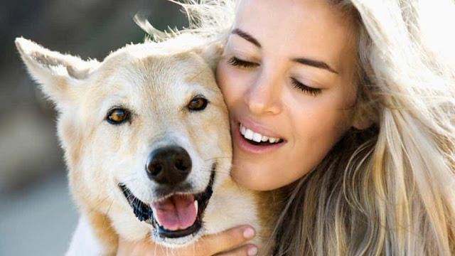 Helping Your Dog Use Their Sense of Smell More