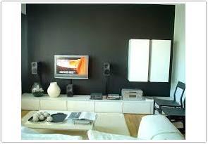 warna cat ruang tamu menurut feng shui hitam