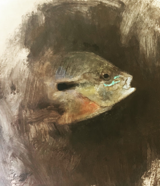 ARTIST D. RIVERS STUDIO - Redbreast Sunfish