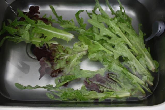 Kaldt vann-trikset brukes på slapp salat for å unngå matsvinn