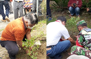 Bulan Bakti Pramuka Peduli Lingkungan Kwarcab Tana Toraja Tanam 10.000 Pohon dari Salubarani - Rantelemo
