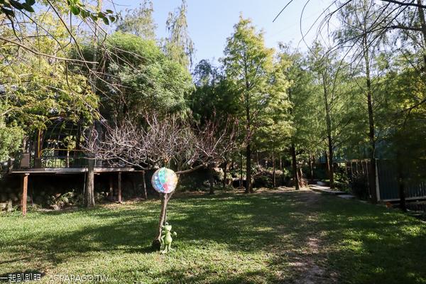 台中北屯|澄石享自在生態園區|走木棧道進入落羽松秘境|享受輕鬆自在