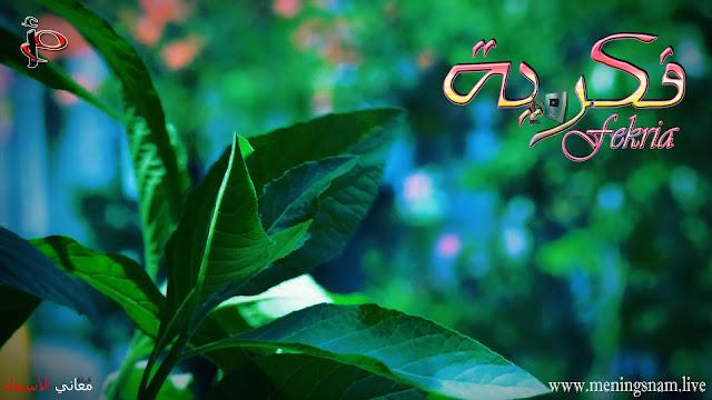 معنى اسم, فكرية, وصفات, حاملة هذا, الاسم, Fekria,