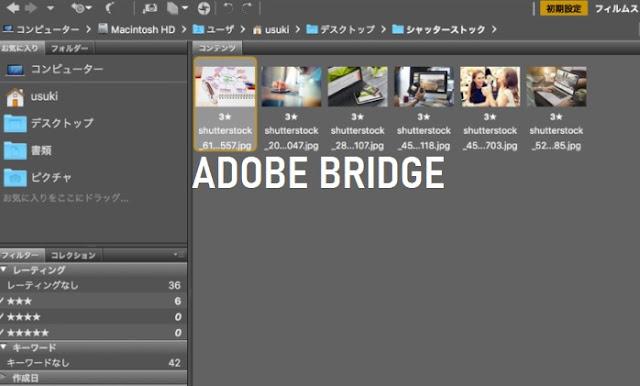 Fungsi dan Kegunaan Adobe Bridge