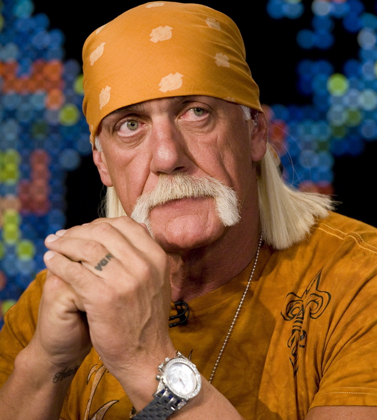 hulk hogan racist rants