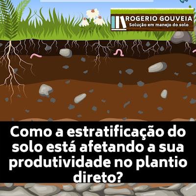 Como a estratificação do solo está afetando a sua produtividade no plantio direto?