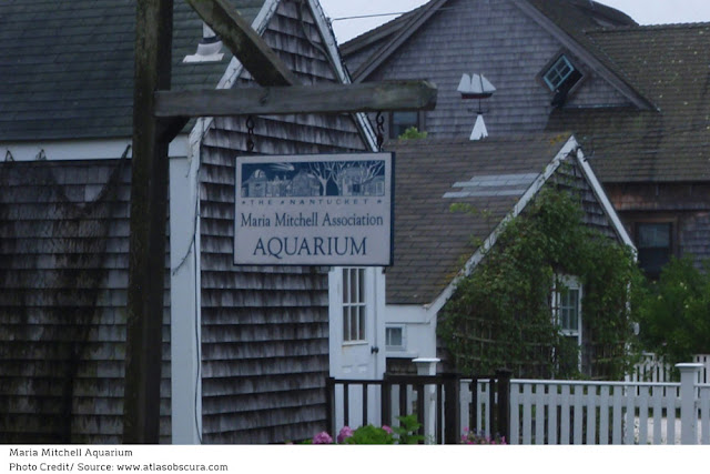 blue and white sign of the Maria Mitchell Aquarium
