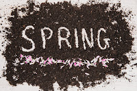 Spring with Dirt and Flowers