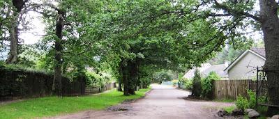 The Old Line Road, Ballater, Deeside walks