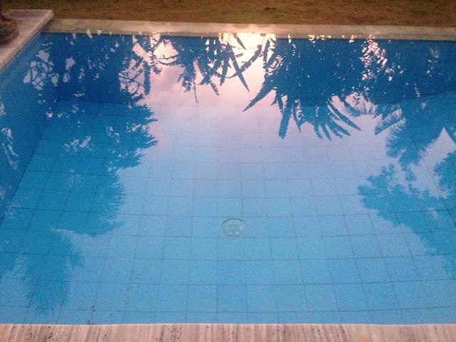aide leit-lepmets indoneesia inspiratsioon riisipõld riisipõllud bassein