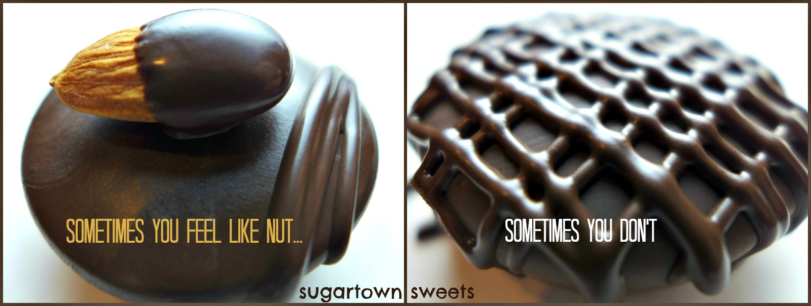 Sugartown Sweets Chocolate Covered Coconut Chocolate Milk