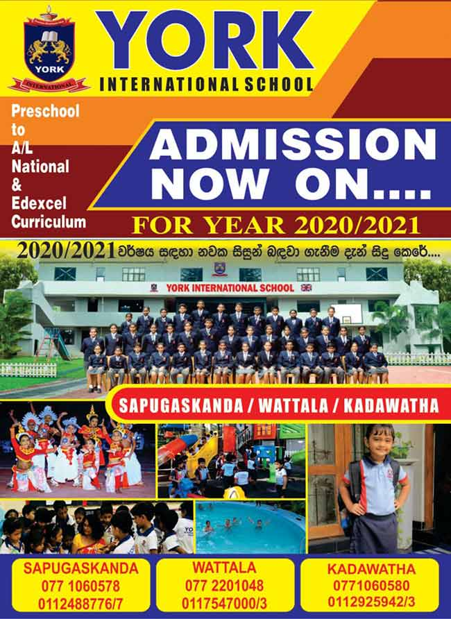 York International School - Admission Now On.