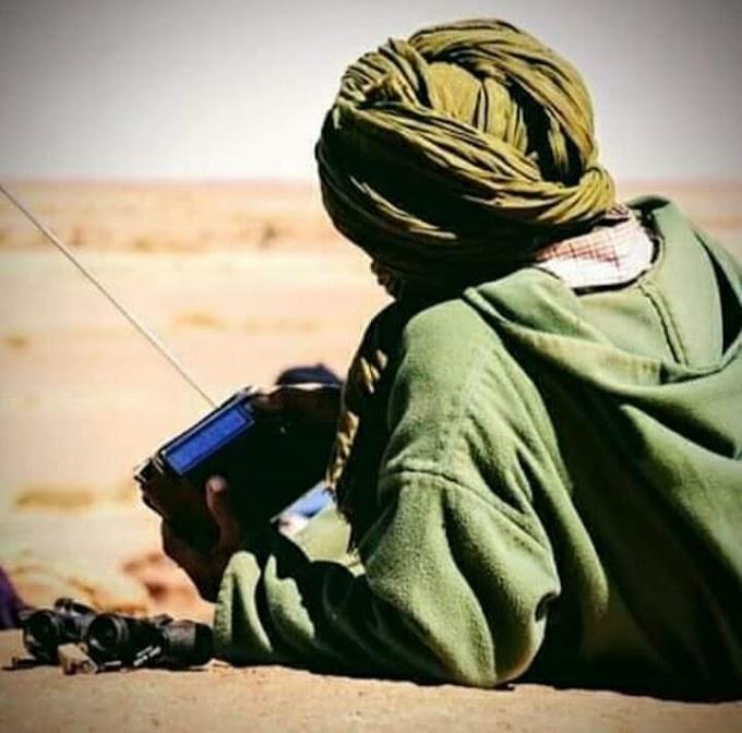 Dejen de expoliar de manera tan vergonzosa el Sáhara Occidental