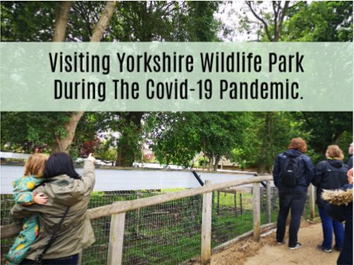 Visiting Yorkshire Wildlife Park Throughout Covid 19 Coronavirus  Katrina Over 30s UK blogger talking about parenting, autism, mental health, books and coeliac disease.