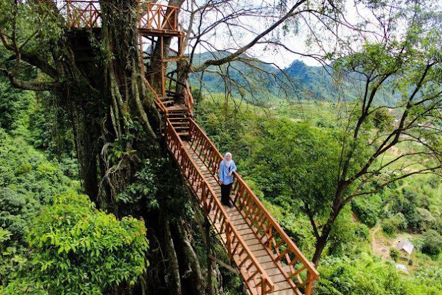 3. Rumah Pohon dan Jembatan Gantung Curug Ciherang Jonggol