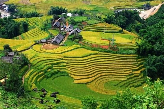 [Le Thi Hong Phuong]  Распространение и развитие протестантизма во Вьетнаме: история и современность