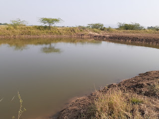 Farm pond structure on arable land