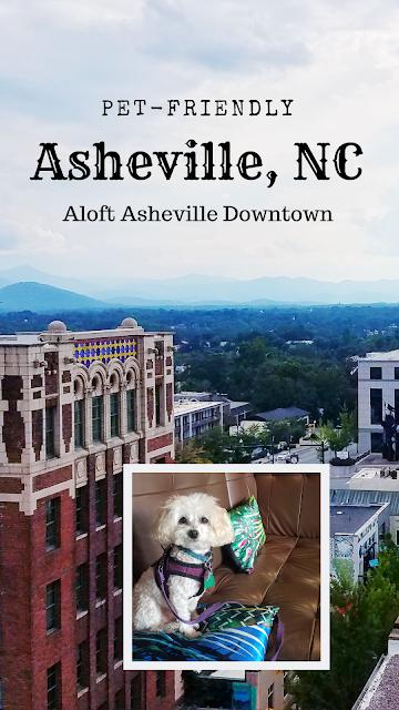 Pet-friendly Asheville