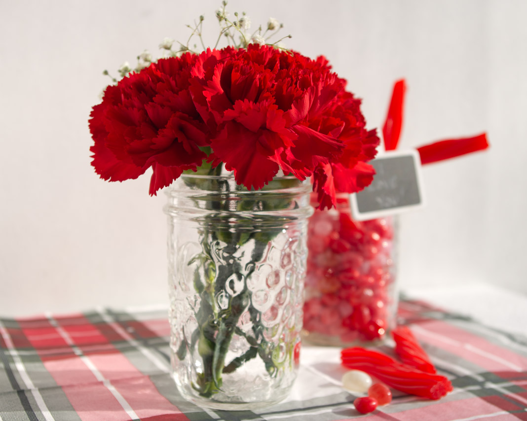 Valentine's Day Decor | carnations, baby's breath, mason jar, plaid | personallyandrea.com