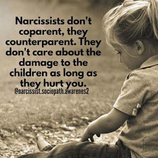 Behind the Narcissist Mask: The Bully, Coward, Liar and