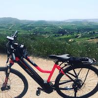 Alquiler de bicicletas electricas  en La Rioja