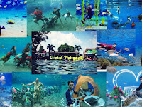 Umbul Ponggok, Underwater Photo Spot You Must Try