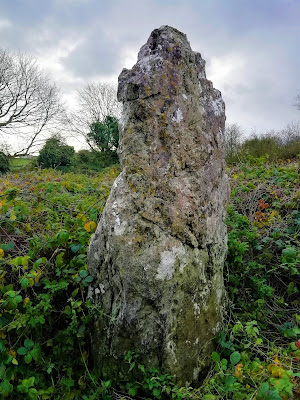 Skirk Standing Stone, Laois