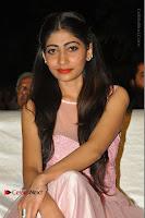 Virus Telugu Movie Audio Launch Stills .COM 0022.jpg