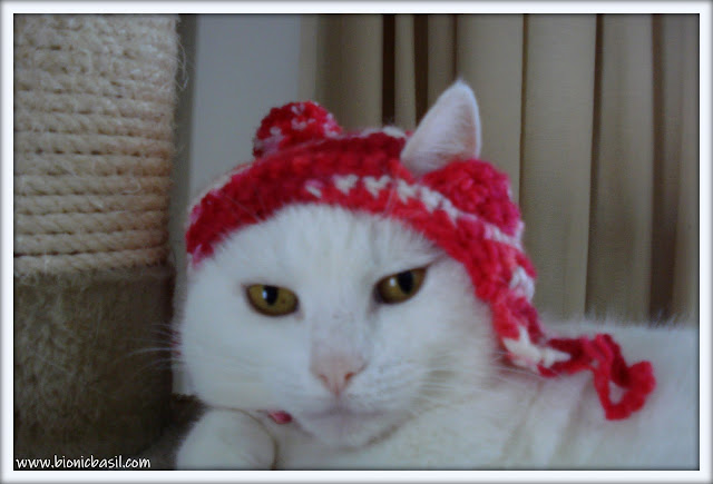 Friday Fluffers at BBHQ ©BionicBasil® Angel Snowies Red Hat Fail