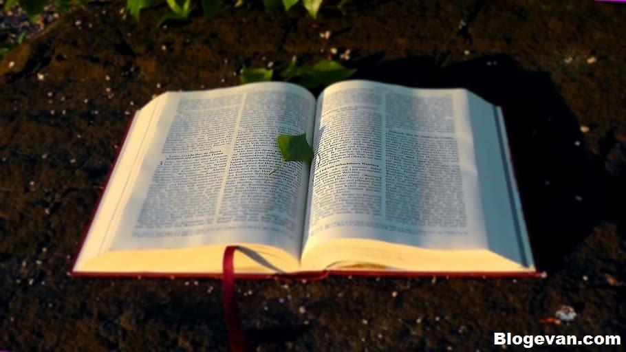 Bacaan Injil Senin 1 Februari 2021, Renungan Katolik Senin 1 Februari 2021, Senin, 1 Februari 2021, Injil Hari Ini, Bacaan Injil Hari Ini, Bacaan Injil Katolik Hari Ini, Bacaan Injil Hari Ini Iman Katolik, Bacaan Injil Katolik Hari Ini, Bacaan Kitab Injil, Bacaan Injil Katolik Untuk Hari Ini, Bacaan Injil Katolik Minggu Ini, Renungan Katolik, Renungan Katolik Hari Ini, Renungan Harian Katolik Hari Ini, Renungan Harian Katolik, Bacaan Alkitab Hari Ini, Bacaan Kitab Suci Harian Katolik, Bacaan Injil Untuk Besok, Injil Hari senin, Februari