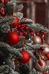 Ce facem cu bradul care ne-a bucurat de Crăciun? Există centre de colectare şi reciclare