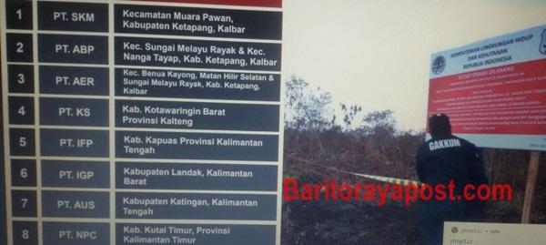 Lahan PT. IFP Mantangai Diduga Garap Kayu Produktif Tanpa Barcode