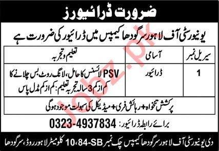 Jobs in University of Lahore Sargodha
