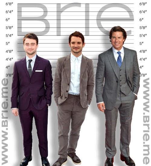 Daniel Radcliffe, Elijah Wood, Tom Cruise height comparison