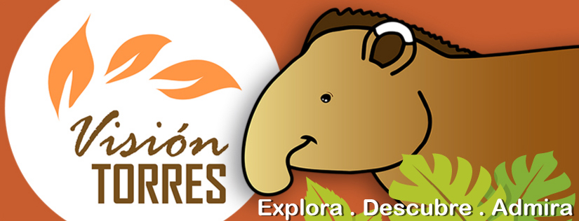 VISION TORRES - IMAGENES DE NUESTRO MUNDO