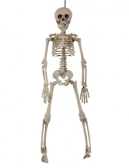 squelette décoration halloween