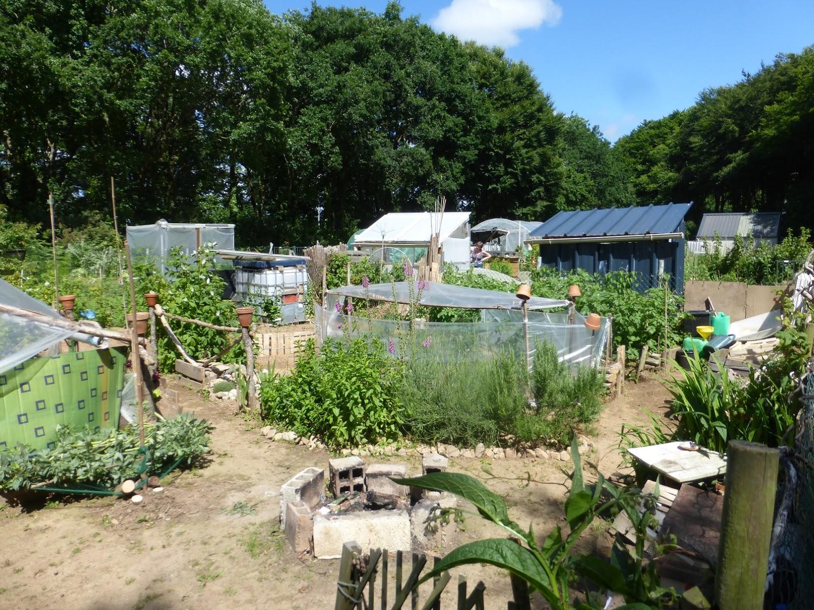 Caf jardin de saint urbain d couverte d 39 une technique for Jardin urbain permaculture