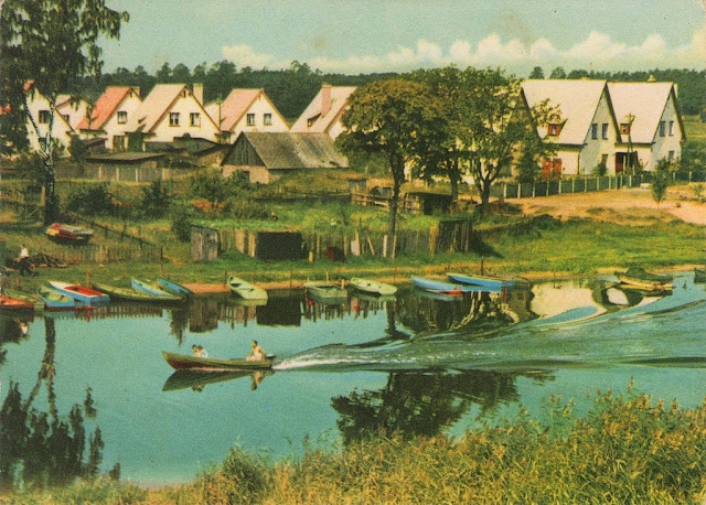 1963 год. На берегу Кишозера