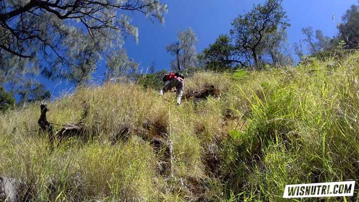 Rute Menuju Kawah Candradimuka Gunung Lawu