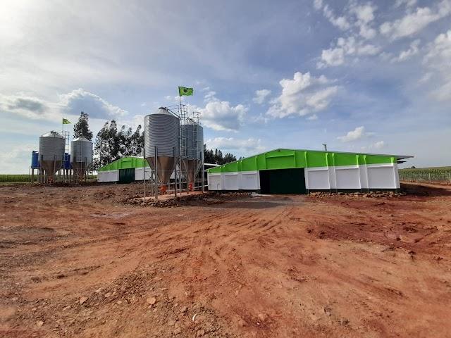 Prefeitura incentiva a instalação de novos aviários em Foz do Iguaçu